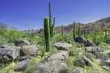 4320 Cush Canyon Loop - Photo 19