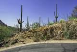 4320 Cush Canyon Loop - Photo 20