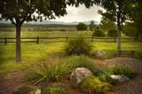 393 Curly Horse Road - Photo 13