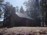 12669 Loma Linda Extension Road - Photo 3