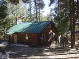 12669 Loma Linda Extension Road - Photo 4
