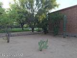 380 Paseo Aguila - Photo 19