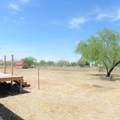 11436 Paseo Alejandro - Photo 8