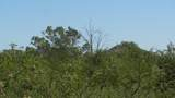 0000 Elvado Road - Photo 8