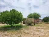 11656 Nogales Highway - Photo 9