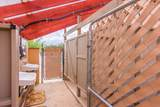 12050 Desert Sanctuary Road - Photo 19