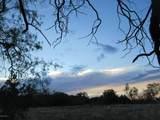 86 Lyle Canyon Road - Photo 24