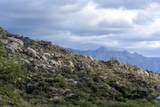 16500 Ridge Rock Trail - Photo 2
