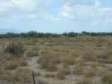 6565 Cotton Tail Trail - Photo 24