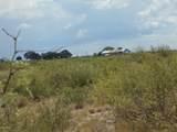 6565 Cotton Tail Trail - Photo 25