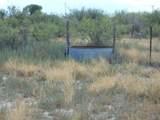 6565 Cotton Tail Trail - Photo 26