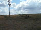 6565 Cotton Tail Trail - Photo 29