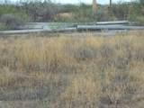 6565 Cotton Tail Trail - Photo 31