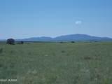 1336 San Rafael Valley Road - Photo 30