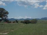 1336 San Rafael Valley Road - Photo 43