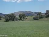 1336 San Rafael Valley Road - Photo 46