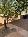 10390 Boulderfield Drive - Photo 29