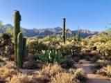 5051 Sabino Canyon Road - Photo 48