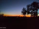 4676 Camino Rosa - Photo 34