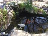7145 Hot Desert Trail - Photo 14