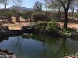 7145 Hot Desert Trail - Photo 7