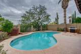 11513 Eagle Peak Drive - Photo 46