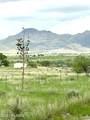55 Camino Del Corral - Photo 44