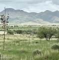 55 Camino Del Corral - Photo 45