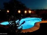 12929 Desert Olive Drive - Photo 44