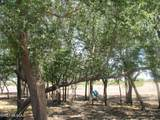 9150 Walnut Trail - Photo 38