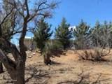 24460 Chickasha Trail - Photo 46