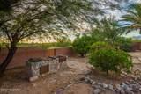3640 Saguaro Shadows Drive - Photo 25