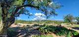 3640 Saguaro Shadows Drive - Photo 38