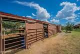 940 Vidal Drive - Photo 36