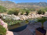 37741 Desert Sun Drive - Photo 2