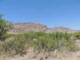 TBD Eagle Ridge Trail - Photo 30