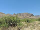 TBD Eagle Ridge Trail - Photo 39