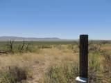 TBD Eagle Ridge Trail - Photo 46