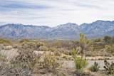 12614 Sleeping Coyote Drive - Photo 24