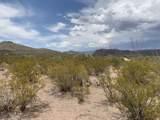 12435 Agua Verde Road - Photo 15