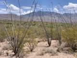12435 Agua Verde Road - Photo 2