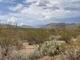 12435 Agua Verde Road - Photo 4
