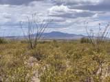 12435 Agua Verde Road - Photo 5