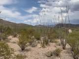 12435 Agua Verde Road - Photo 9