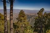 12825 Upper Loma Linda Road - Photo 44