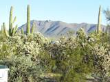 5535 Lak A Yucca Road - Photo 25