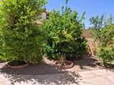 480 Camino Tunera - Photo 42
