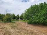 11656 Nogales Highway - Photo 1