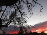 86 Lyle Canyon Road - Photo 14
