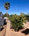 4122 Palm Grove Drive - Photo 31